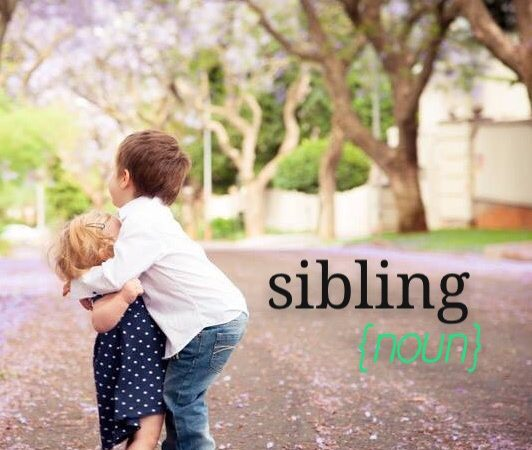 Sibling {noun}